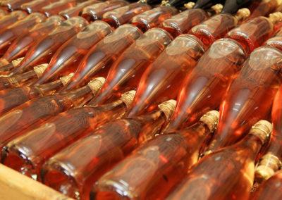 plettenvale-wines-11