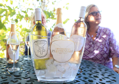 plettenvale-wines-6
