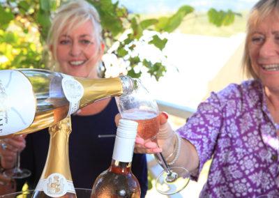 plettenvale-wines-8