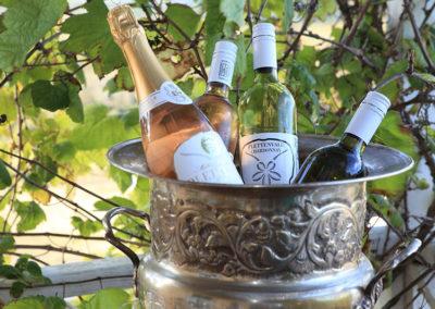 plettenvale-wines-19